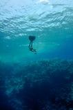 Freediver déménage sous l'eau le long du récif coralien Photos libres de droits