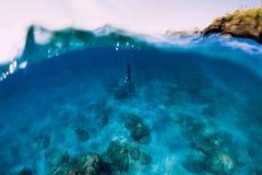 Freediver dans l'eau du fond de piqué de wetsuit en mer photographie stock