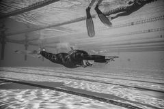 Freediver Dynamic with Monofin Performance from Underwater. MONTREAL, CIRCA JUNE 2014 - Two Hot Spring Days of Freediving Competition at Jean-Drapeau 50m Outdoor royalty free stock photos