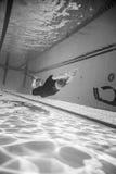 Freediver dynamisch mit Monofin-Leistung vom Underwater lizenzfreie stockfotografie