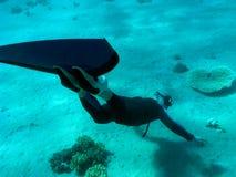 Freediver encontrou um coral heart-shaped na parte inferior imagens de stock royalty free