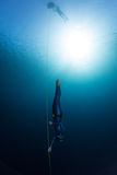 Freediver. Free diver descending along the rope Royalty Free Stock Photography