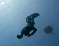Freediver makes a safety dive. Under a freediving buoy in the Blue Hole, Dahab, Egypt royalty free stock photos