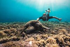 Freediver man med den gulliga sköldpaddan arkivfoton