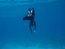 Freediver met monofin maakt draai dichtbij overzeese bodem Stock Foto's