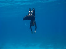 Freediver with monofin makes turn near sea bottom Stock Photos