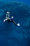 Freediver moves underwater along coral reef. The freediver moves underwater near the coral reef at the depth of Blue Hole. Read Sea, Egypt Royalty Free Stock Image