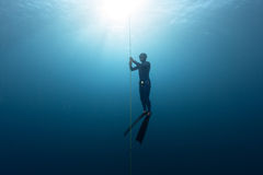 Freediver no mar Imagens de Stock