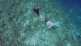 Freediver Pozować Podwodny zbiory wideo