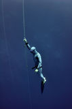 Freediver raises from the depth by rope Stock Photo