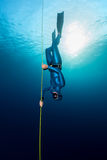 Freediver in the sea. Lady freediver descending along the rope. Free immersion discipline Royalty Free Stock Images