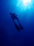Freediver silhouette. A photo of a freediver as he is going up to the surface for air Royalty Free Stock Photos