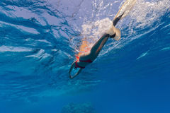 Freediver snorkling on water surface Stock Images