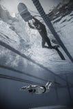 Freediver som är dynamisk med den Monofin kapaciteten från undervattens- Arkivfoto