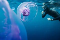 Freediver swim in the sea with jellyfish Stock Photo