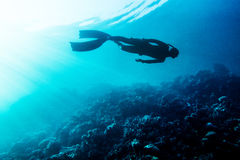Freediver swim in the sea Royalty Free Stock Images