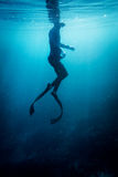 Freediver swim in the sea. Freediver in wetsuit neoprene swim in the sea Royalty Free Stock Images