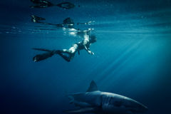 Freediver swim in the sea. Freediver in wetsuit neoprene swim in the sea Stock Photos