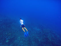 Freediver swims underwater in deep blue sea. Snorkeling man dives up to water surface. Open water diving lesson. Ocean deep open water view. Diver man Stock Images