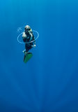 Freediver tries to swim through the air ring Stock Images