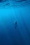 Freediver Stock Photography