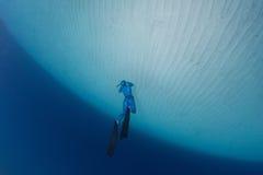 Freediver Stock Image