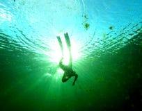 Freediver w alga wertebie Fotografia Royalty Free