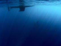 Freedivers Lizenzfreie Stockbilder
