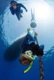 Freedivers Royalty Free Stock Photos
