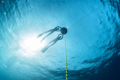 Freedivers in the sea Stock Image