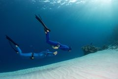 Freedivers in the sea. Two freedivers finning over the sandy sea bottom Royalty Free Stock Photos