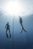 Freedivers Royalty Free Stock Photography