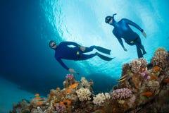 Freedivers Stock Photos