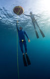 Freedivers Stock Photography