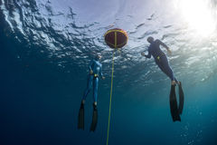 Freedivers. Two free divers training openwater on the buoy Stock Photo