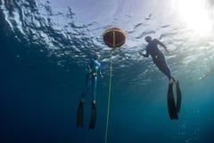 Freedivers Stock Photo