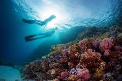 Freedivers Royalty Free Stock Image