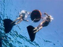 freediving подготовки Стоковая Фотография RF