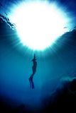 Freediving in blue water Stock Photography