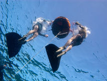 Freediving preparations. Two freedivers prepare their equipment for the training royalty free stock photography