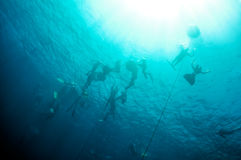 Freediving training in the depth of Blue Hole Royalty Free Stock Photos