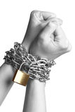 Freedom. Human hands are bond with a chain and a padlock -isolated on a white background Stock Photos