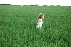 Freedom. A young girl in a white dress running threw a field of green wheat Stock Photos
