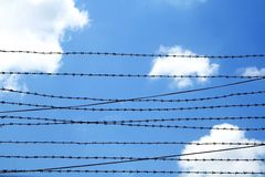 Freedom. Barbed wire against blue sky royalty free stock photo