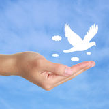 Freedom. Hand with a pigeon flying against the blue sky Royalty Free Stock Photos
