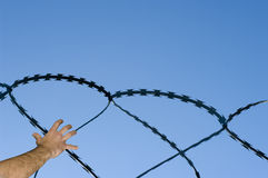 Freedom. Concept of human rights restriction Royalty Free Stock Image