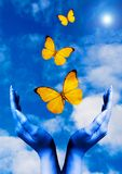Freedom. Open hands with butterflies flying away in the blue sky Royalty Free Stock Images