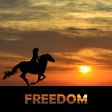 Freedom abstract concept. With woman riding a horse Stock Photography