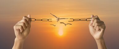 Free Freedom And Charge Concept With Broken Chain Flying Of Birds With Sky Sunrise Background Stock Image - 189393251