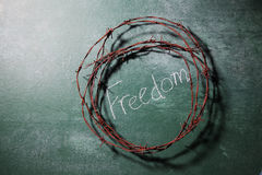 Freedom Royalty Free Stock Photography